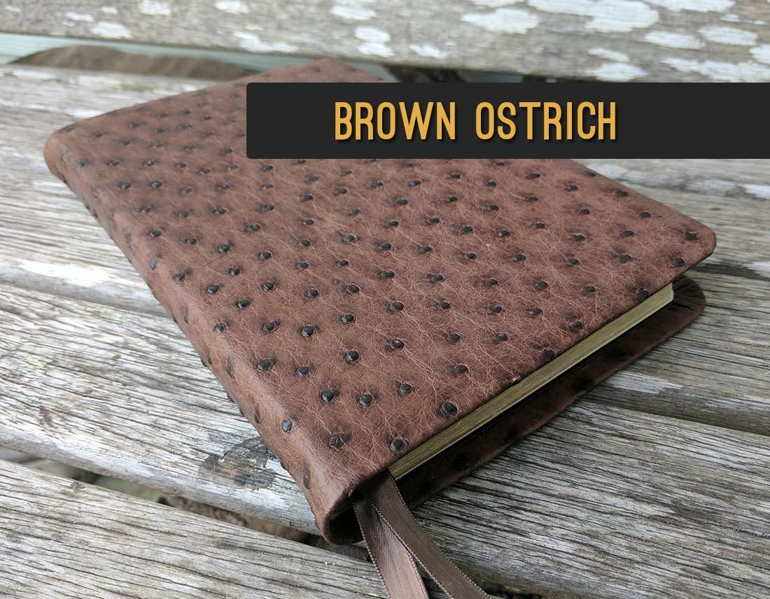 Repair & Rebind Your Bible in Brown Ostrich Leather | Jacksonville, FL