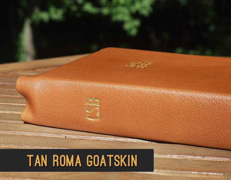 Repair and Recover your Bible in Tan Roma Goatskin Leather